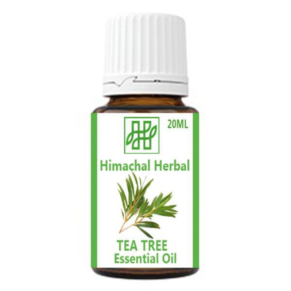 Tea Tree Essential Oil #himachalherbal