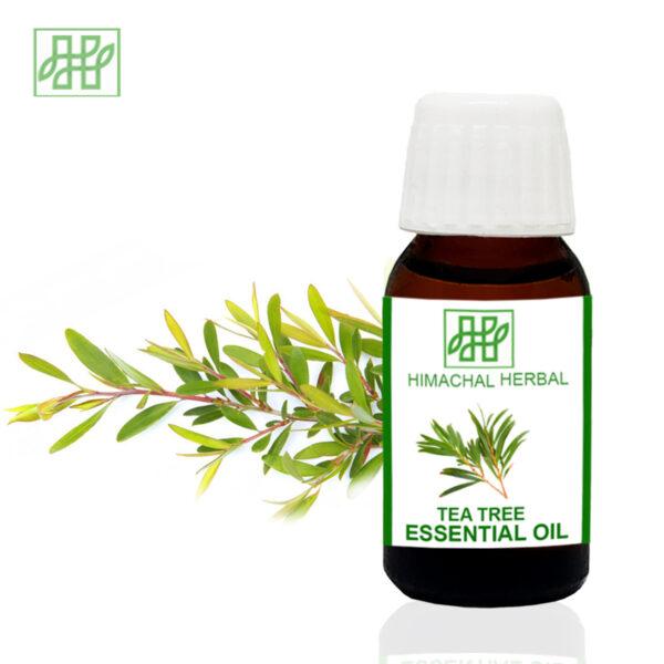 Himachal Herbal-Himachal Herbal Tea Tree pure organic natural essential oil